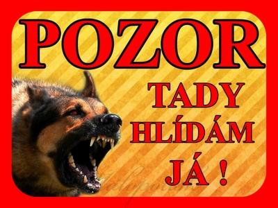 Výstražná cedulka s drsným psem žluté pozadí